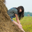 Portrait of pretty brunette lying on haystack — Stock Photo #27548113