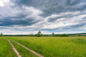Peaceful summer rural landscape — Stock Photo