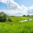 Peaceful rural landscape with river in wide field — Stock Photo