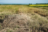 Pile of straw in wide peaceful field in countryside — Stock Photo