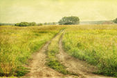Peaceful landscape with country road, retro styled photo — Stock Photo