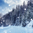 Beautiful snowstorm — Stock Photo #40855733
