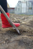 Woman wearing red rubber boots using shovel in her garden — Stock Photo