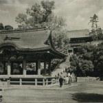 Tsurugaoka Hachimangu shrine in Kamakura, Japan. — Stock Photo