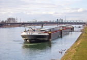 Barge on Rhine river — Stock Photo