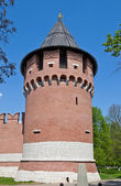 Nikitskaya Tower (XVI c.) of Tula Kremlin, Russia — Stock Photo