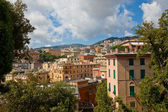Summer view of Genoa city, Italy — Stok fotoğraf