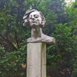 Stock Photo: Bust of Polish composer Frederic Chopin in Kaliningrad, Russia