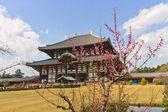 Japon de nara, temple todaiji. site de l'unesco — Photo
