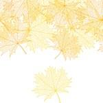 Autumn macro leaf of maple. Vector bacground. — Stock Vector