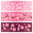 Cherry blossom flowers banner set. — Stock Vector