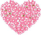 Kort med stiliserade körsbärsblommor blommor. — Stockvektor