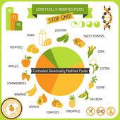 Information Poster Genetically Modified Foods — Stock Vector