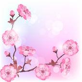 春天樱花鲜花自然背景. — 图库矢量图片