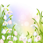 Spring flowers snowdrops natural background. — Stockvektor