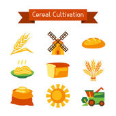 Cereal cultivation and farming icon set. — Stock Vector