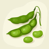 Stylized vector illustration of fresh ripe bean pods. — Stock Vector