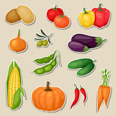 Sticker icon set of fresh ripe stylized vegetables. — Stock Vector