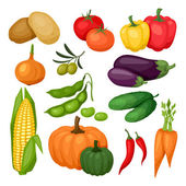 Icon set of fresh ripe stylized vegetables. — Vector de stock