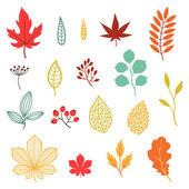 Set of various stylized autumn leaves and elements. — Stockvector