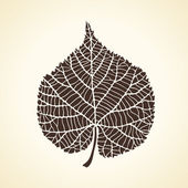 Stylized detail silhouette of leaf isolated on background. — Stock Vector