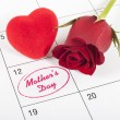 Mothers day — Stock Photo #24987269