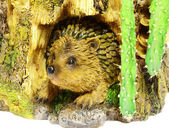 Hedgehog in the burrow — Stock Photo