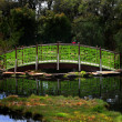 Stock Photo: Green bridge