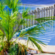 Swimming pool,  barrier and  palm tree — Stock Photo