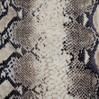 Snakeskin fabric — Stock Photo #22735879