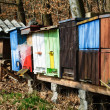 Colorful bee hives — Stock Photo