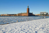 Stockholm City hall in winter. — Stockfoto