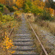 Old railroad tracks. — Stock Photo