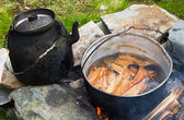 Outdoor cooking on a campfire. — Stock Photo