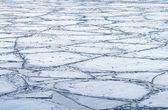 Gelo rachado. — Foto Stock