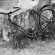 Stock Photo: Old rusty bike in black and white.