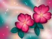 Ilustración del color de las flores — Foto de Stock