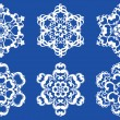 Decorative vector Snowflakes set — Vector de stock #13608311