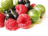 Variedade de frutas — Foto Stock
