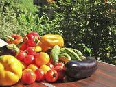 Zeleninový — Stock fotografie