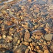 Stock Photo: Stones under water