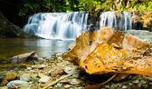 Mae poon waterfall — Stok fotoğraf
