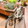 Flower on the bike — Stock Photo