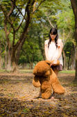 The girl with a bear — Stock Photo