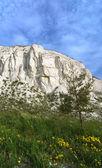 Křídové horniny — Stock fotografie