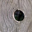 The hole in the wooden fence. — Stock Photo