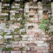An ancient wall. — Stock Photo