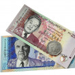 Two banknotes and one coin of Mauritius. — Stock Photo