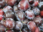 Plums -2 — Stock Photo