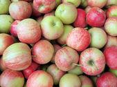 Apples — Stock Photo